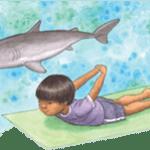 dolphin_nobkg_300w